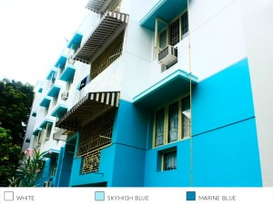 Best Exterior Painting